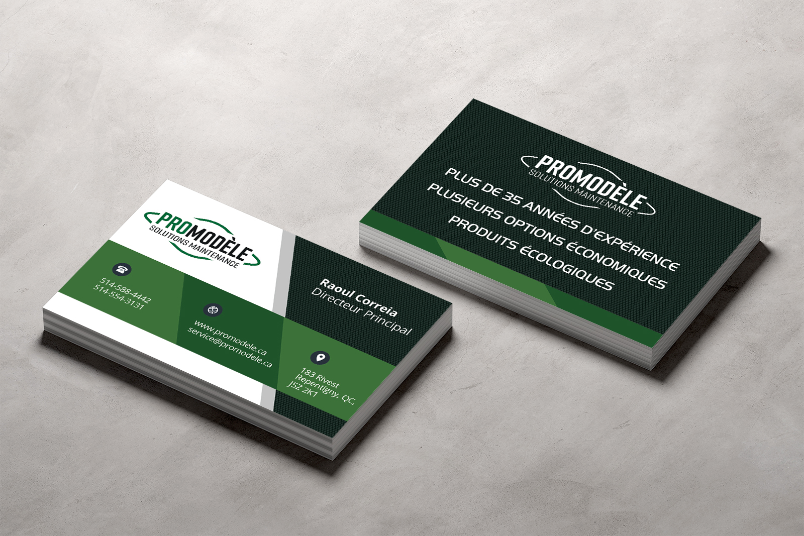 graphisme-cartes-affaires-promodele